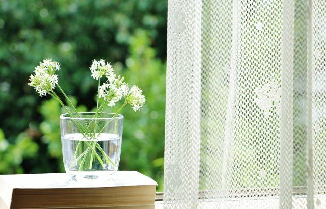 窓ガラスにマジックミラーフィルムを貼って、昼間はカーテンを開けよう!